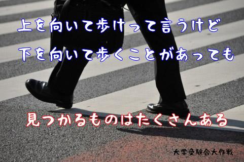 上を向いて歩けって言うけど、下を向いて歩くことがあっても、見つかるものはたくさんある